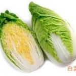 白菜の簡単レシピ 白菜レシピ人気1位もご紹介します