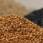 ごまを使ったレシピ 小さい粒に栄養や効能がすごい!
