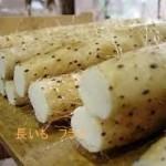NHK あさイチで放送された フライドポテトの上をいく「フライド長いも」のアレンジレシピ