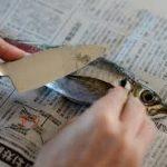 アジのレシピ フライパンを使った料理 下処理の仕方も紹介します。