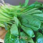 小松菜レシピ 簡単で人気の卵を使った1品