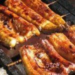 少ないうなぎ(鰻) レシピ 土用の丑の日でも節約しながら作る方法