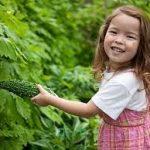 ゴーヤレシピ 子供でも苦くない簡単サラダから紹介します。