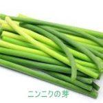 ニンニクの芽(茎ニンニク)レシピ 我が家の人気1位は?