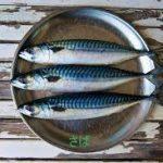 鯖(サバ)レシピ 人気の味噌煮から紹介します。