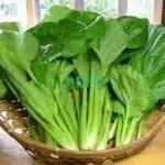 小松菜レシピ クックパッド人気 1位はつくれぽ5000人以上