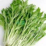 水菜のレシピ!人気 1 位 サラダは胡麻風味です。