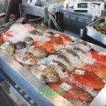 魚レシピ 人気 1 位は?つくれぽ1000以上